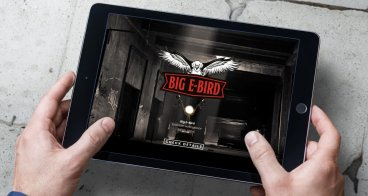Logo ontwerp, website ontwikkeling en fotografie | Big E-Bird