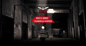 Logo ontwerp, ontwikkeling webshop en productfotografie | Big E-Bird